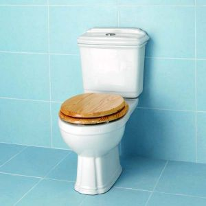 One of the many toilets supplied by MBD Bathrooms, the Genevieve toilet by Impulse