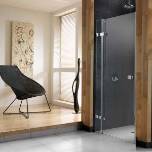 Ellbee Profile Design Pivot Door 800mm