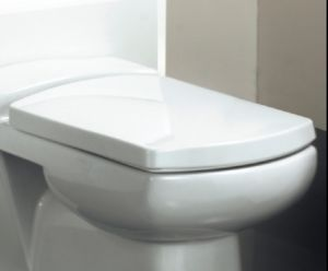 new zeto soft close toilet seat only